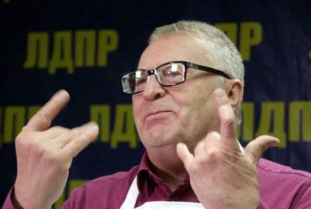 Жириновский едет губернатором в Хабаровский край
