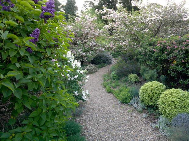 Фьюжн Сад by Arthur Lathouris Garden Designer