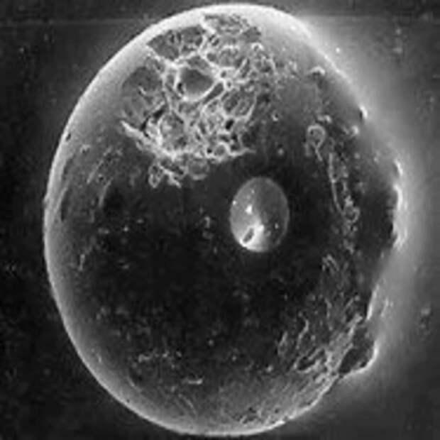 Луну пригнали к Земле для ремонта?