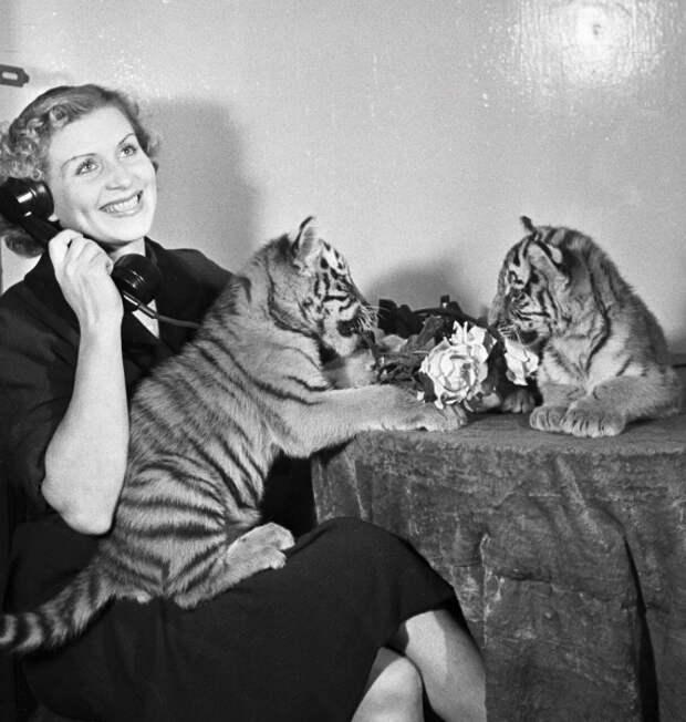 Маргарита Назарова тигры