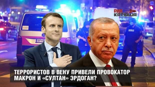 Террористов в Вену привели провокатор Макрон и «султан» Эрдоган?