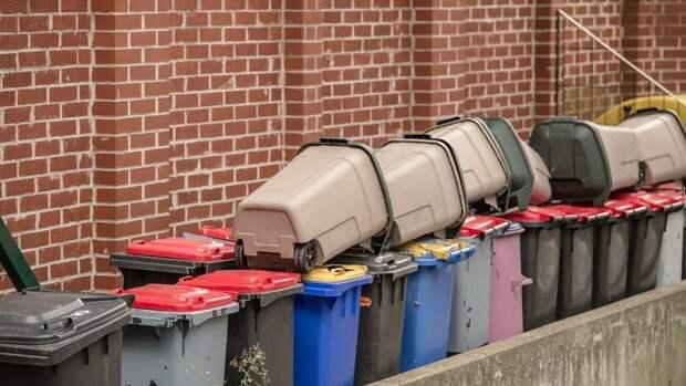 РЭО оценил необходимую поддержку мусорных компаний в 1 млрд рублей