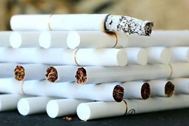 Требования к самозатухающим сигаретам появятся в РФ не раньше 2022 года
