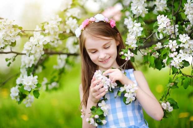 Удаление цветков у яблони