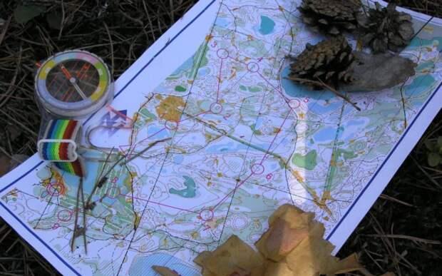 Правила тихой охоты: 5 вещей, которые должен знать каждый грибник