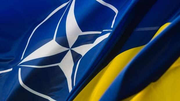 Эксперт предсказал развитие неравноценных взаимоотношений между НАТО и Украиной