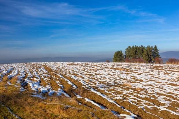 «Дальневосточный гектар»: при Столыпине и сегодня