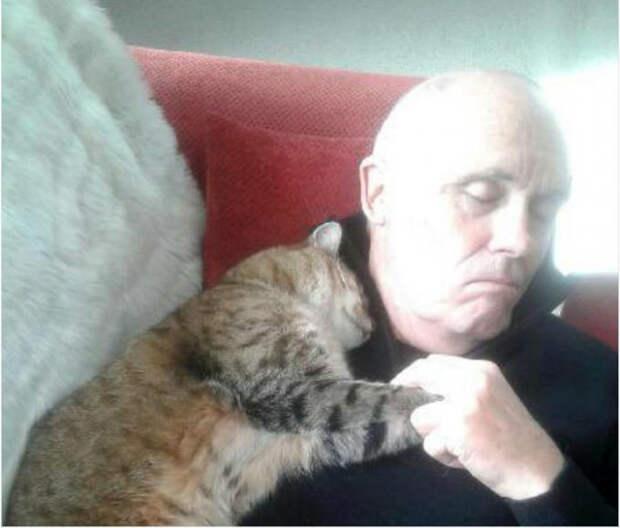 Вот почему фото спящего пенсионера и кота стало вирусным