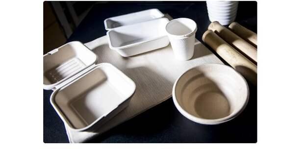 «Сладкое» решение проблемы пластикового загрязнения