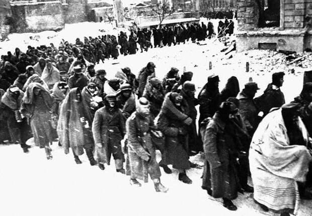 Почему в поражении под Сталинградом немецкие генералы обвиняли Гитлера