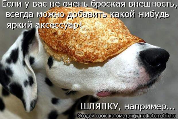 kotomatritsa__ (567x378, 185Kb)