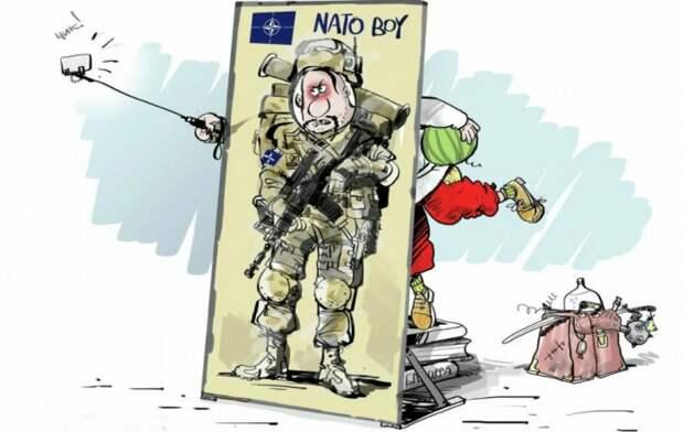 Пока Путин руководит Россией, Украина в НАТО не вступит, а до «потом» Киеву ещё дожить надо