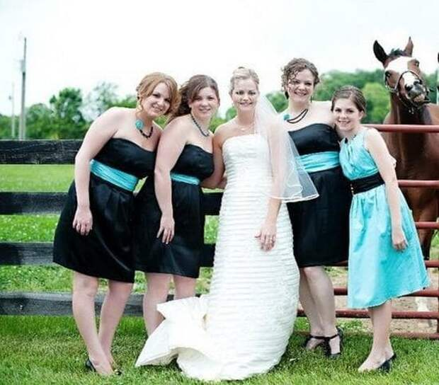 Девчонки, возьмите и меня в подружки невесты! Знаете, как я ржать умею! в кадре, главные герои, животные, забавно, смешно, фото, юмор
