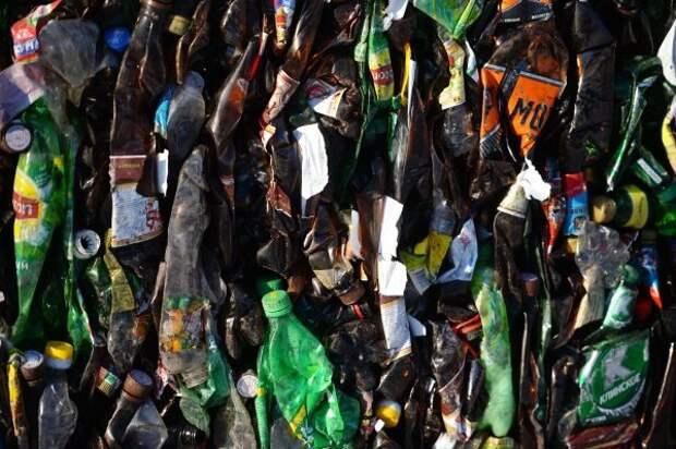 Сергей Ерёмин показал, как его семья утилизирует пластиковые бутылки