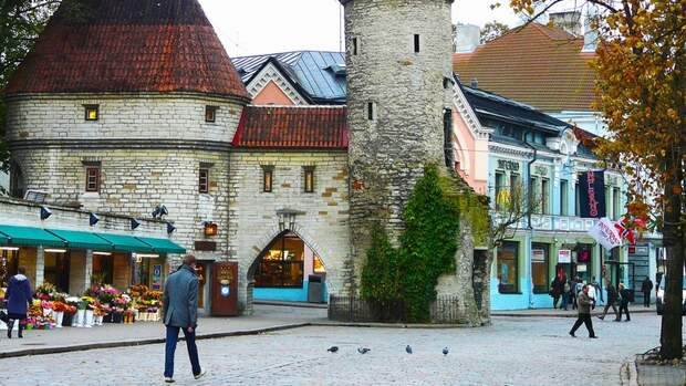 Эстонский провал: Украина следующая?
