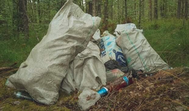 298 садоводческих объединений выбрали организованный вывоз отходов в2021 году
