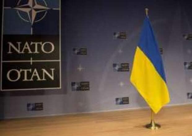 Стандарты НАТО и сержант Петренко: «Иди сюда — стой там!»