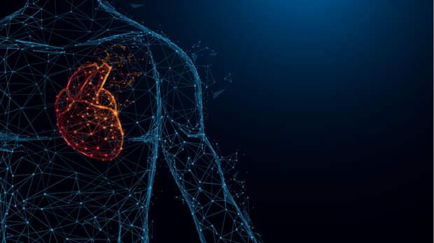 Исследование: простая операция спасает сердечных больных от инсульта