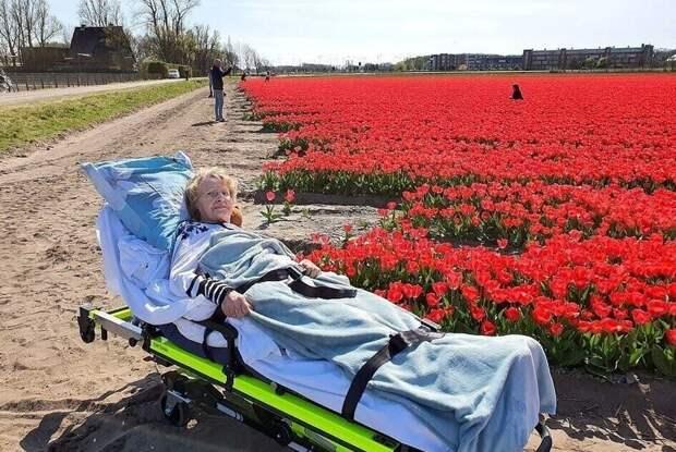 Достучаться до небес: фельдшер исполняет последние желания смертельно больных людей