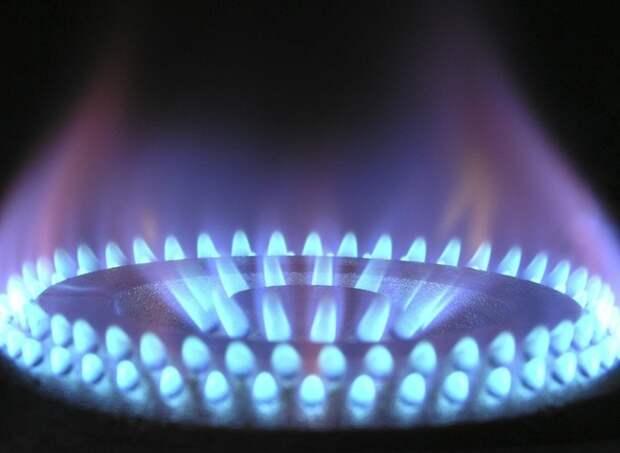 Газпром пообещал бесплатно провести газ к участкам с небольшими домами