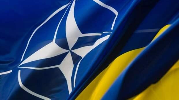 НАТО провоцирует Москву на жесткий ответ