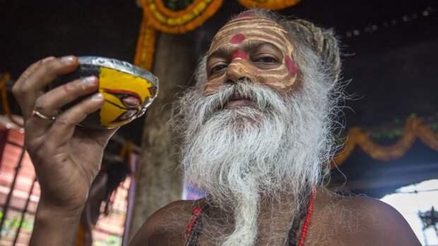 Производителям в России предстоит найти аналоги индийскому чаю