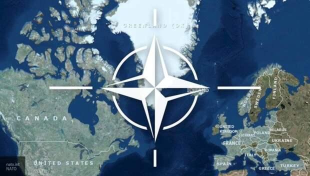 Турция в рамках НАТО ведет особую политику