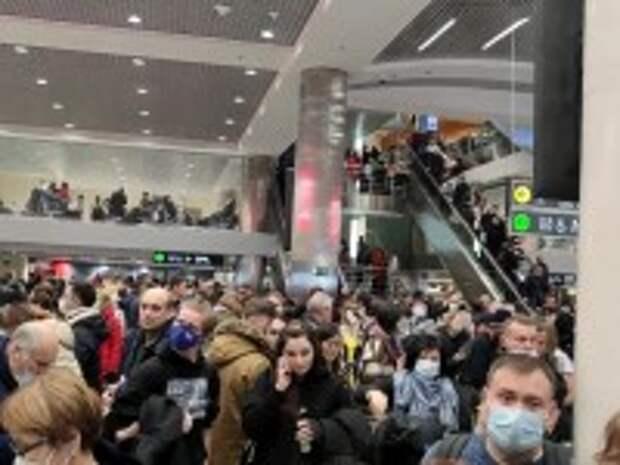 Ледяной дождь парализовал работу столичного аэропорта Домодедово