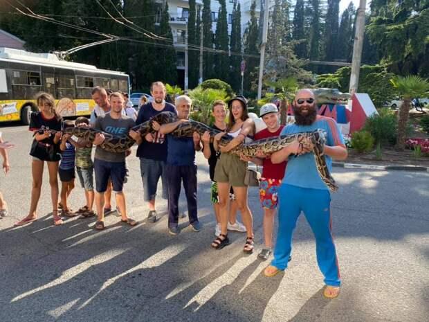 Возле троллейбусного парка Алушты туристы гуляли с пятиметровой змеёй. ФОТО