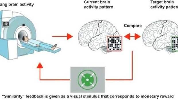 Ученые научились стирать память человека