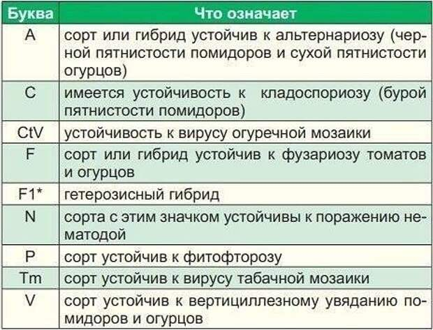 Фото Зодчий.