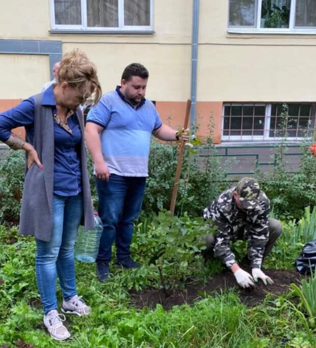 Цветоводы из САО помогли восстановить разворованный цветник на Красноармейской