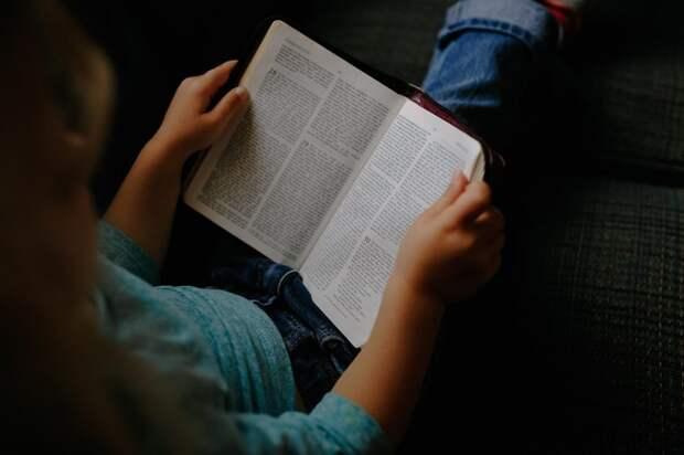 Библиотека под открытым небом откроется в Автозаводском районе
