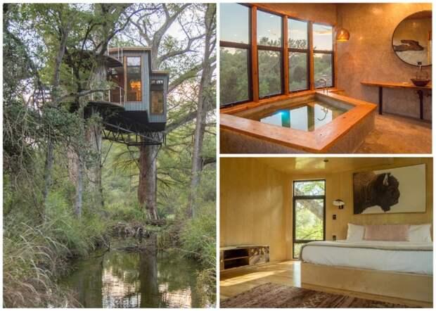 Неожиданно комфортный домик Yoki Treehouse на ветках деревьев (Техас, США).