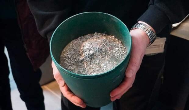 Что случилось с прахом кремированной Легкоступовой