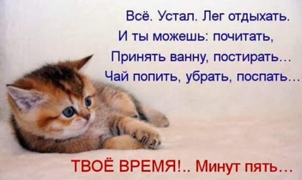 7fc8701ad4fe17289a9a0bb4bde_prev