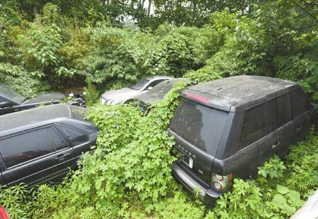 Жители Европы бросают свои машины в полях навсегда