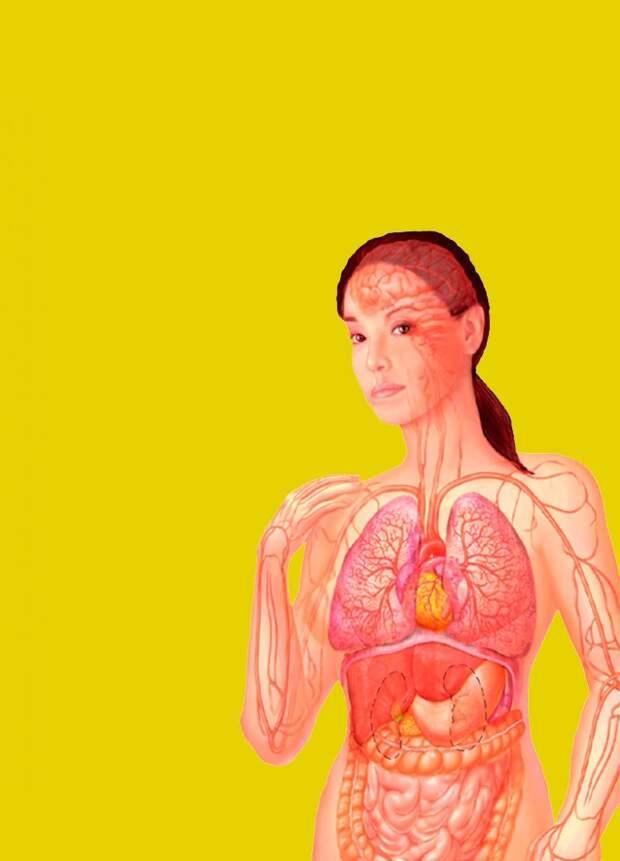 Проблемы с пищеварением, которые указывают на сердечный приступ