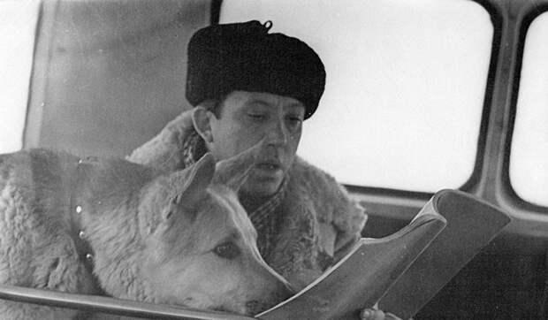 """Как Юрий Никулин и Дейк на съёмках """"Ко мне, Мухтар!"""" подружились"""