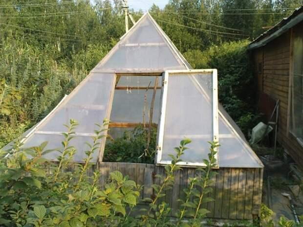 Готовая теплица пирамида из дерева и поликарбоната в саду