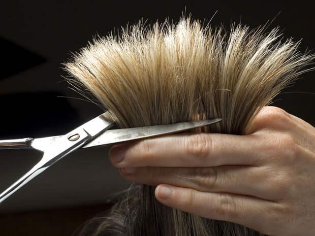 Можно ли на пасхальной неделе стричь и красить волосы?