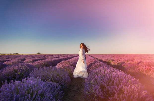 Пора красивых снимков! Список самых ароматных лавандовых полей Молдовы