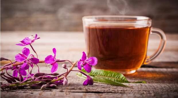 Какие травы нужно пить вместо чая в июне. Пять идеальных сочетаний трав и специй