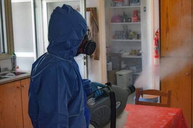Новый штамм коронавируса «мю» проник в Россию