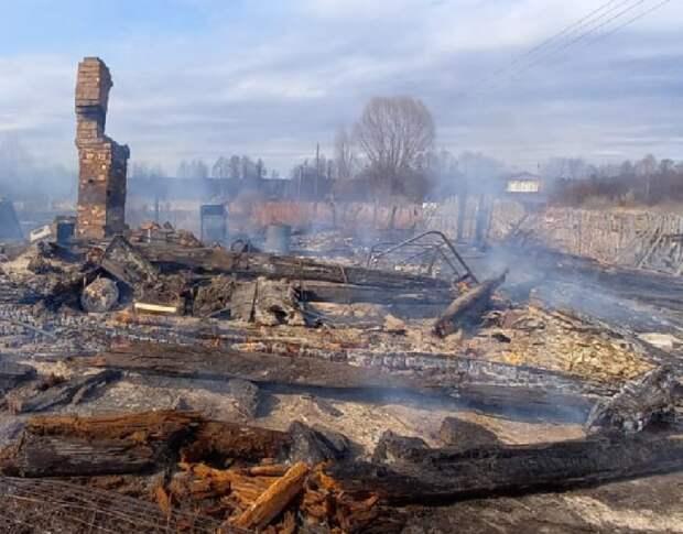 Из-за перехода огня с травы 24 дома сгорело в Нижегородской области