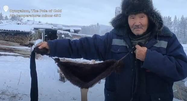 Житель «полюса холода» пошил бюстгальтеры для коров