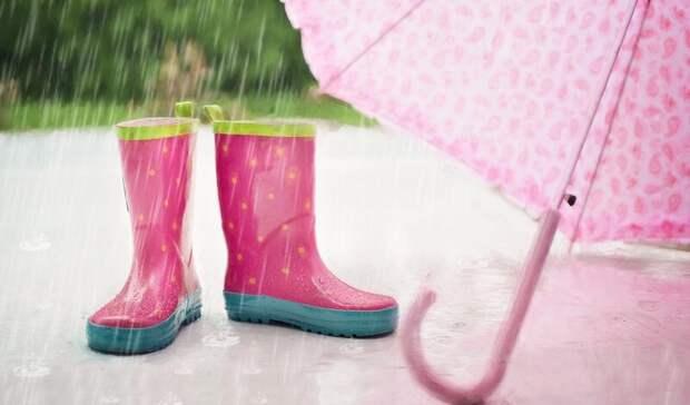 Проливные дожди с похолоданием надвигаются на Ростовскую область