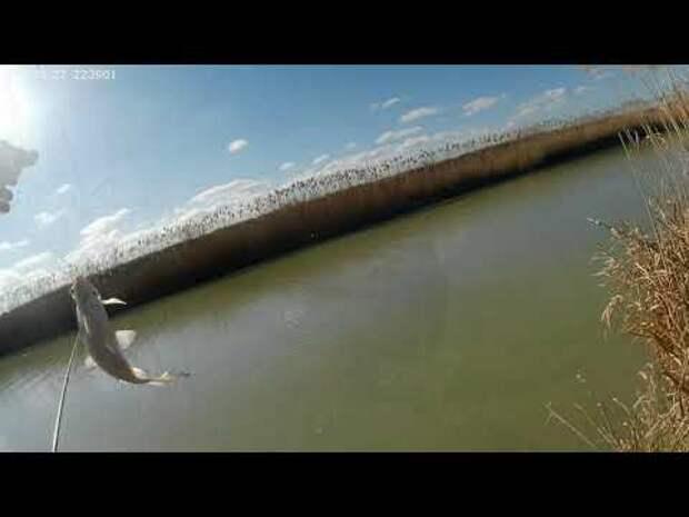 Новое видео о рыбаке.