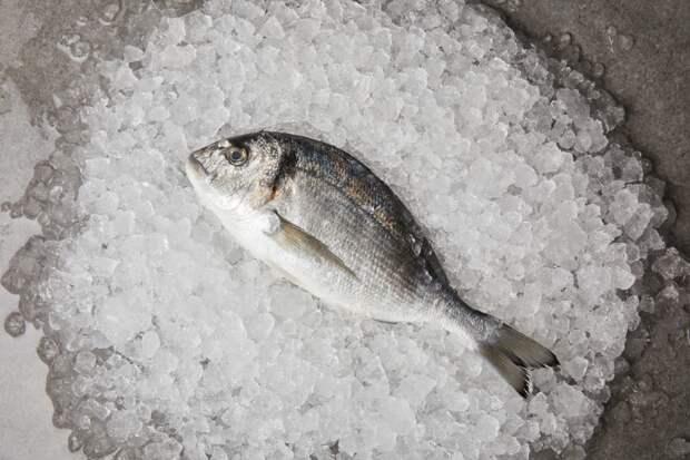 Этих ошибок при жарке рыбы нужно избегать, чтобы блюдо получилось действительно вкусным