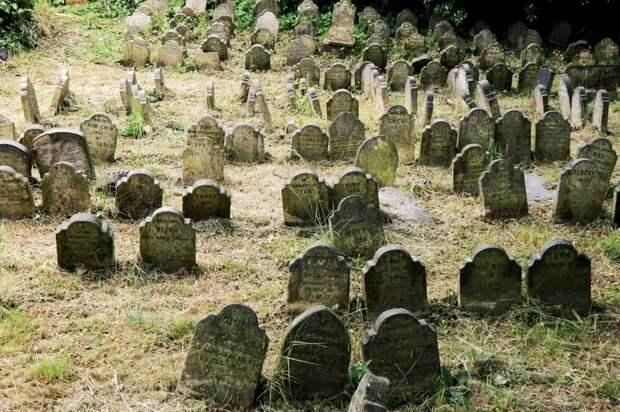 Кладбище домашних животных в Гайд-парке: очень по-кинговски, очень по-викториански